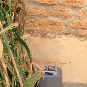 Sensor 32 FEWL an Steinmauer in Santanyí